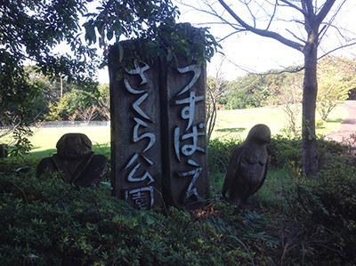 2kouchi1-5.JPG