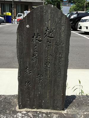 kodama6_yamagata.jpg