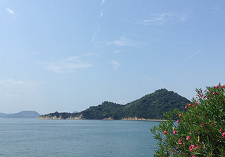 okunojima4.jpg