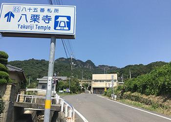 yakuri_1.jpg