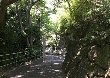 yakuri_8.jpg